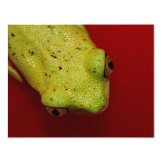 tree frog 4.25x5.5 paper invitation card