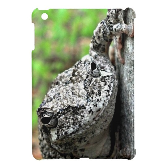 Tree Frog iPad Mini Case