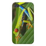 Tree Frog iPhone 4 Covers