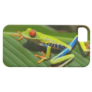 Tree Frog iPhone SE/5/5s Case