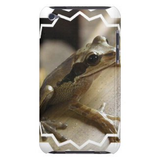 Tree Frog iTouch Case iPod Touch Cover