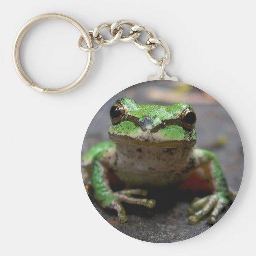Tree Frog Keychain