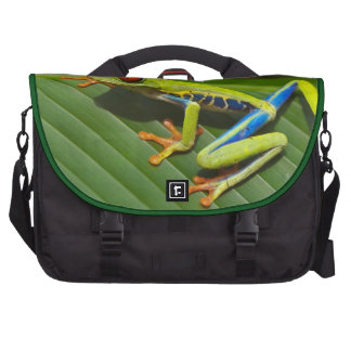 Tree Frog Commuter Bags