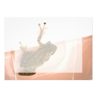 tree frog leg up stylized pink animal personalized announcements