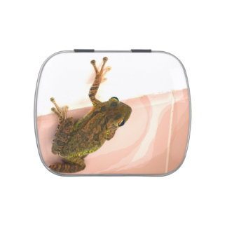 tree frog leg up stylized pink animal jelly belly candy tin