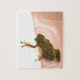 tree frog leg up stylized pink animal jigsaw puzzle