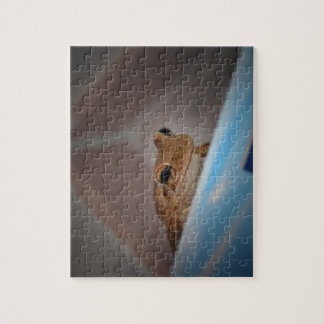 tree frog looking at viewer on blue jigsaw puzzle