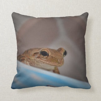 tree frog looking at viewer on blue throw pillow