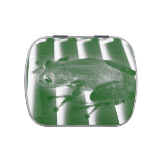 tree frog looking left green sketch animal design jelly belly candy tin