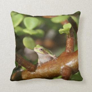 tree frog looking sideways in bonsai tree photo pillow