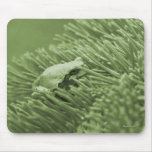 Tree Frog Mouse Mats