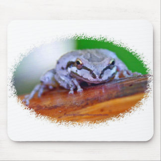 Tree Frog on Banana mousepad