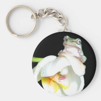 tree frog on orchid keychain