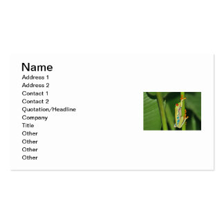 Tree Frog Photo Business Card Templates