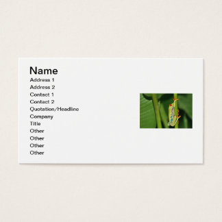 Tree Frog Photo Business Card