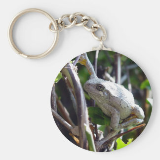 Tree Frog Photo by E.L.D. Keychain