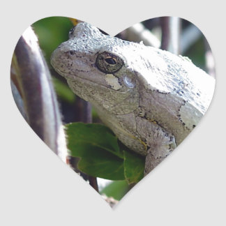Tree Frog Photo by E.L.D. Heart Stickers