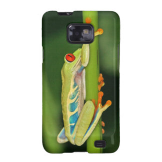 Tree Frog Photo Galaxy SII Cover