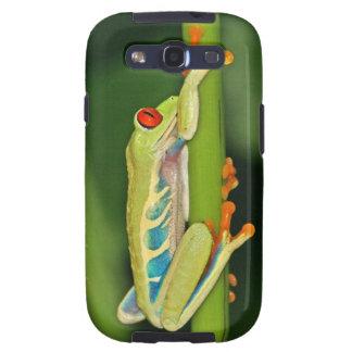 Tree Frog Photo Samsung Galaxy SIII Covers