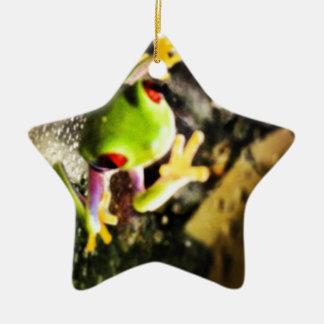 Tree frog photo design ceramic ornament