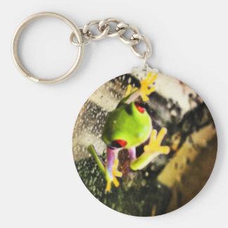 Tree frog photo design keychains