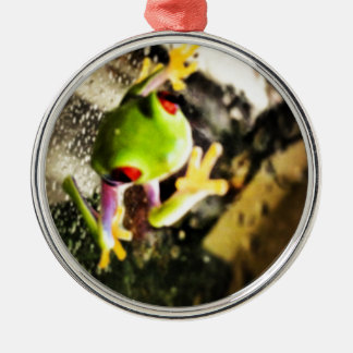 Tree frog photo design round metal christmas ornament