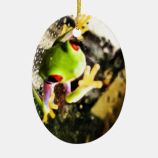 Tree frog photo design Double-Sided oval ceramic christmas ornament