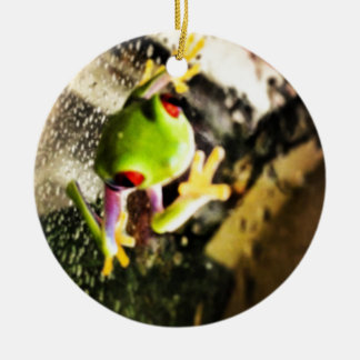 Tree frog photo design Double-Sided ceramic round christmas ornament