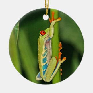 Tree Frog Photo Christmas Ornament