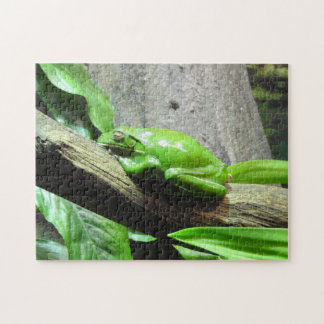 Tree Frog Puzzle