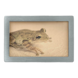 tree frog sepia looking right animal image belt buckle