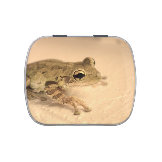 tree frog sepia looking right animal image jelly belly tins