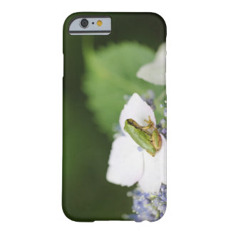 Tree Frog Sitting on a Hydrangea, Hyogo Barely There iPhone 6 Case