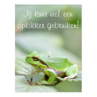 Tree frog with the text 'Opkikker' postcard