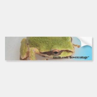 Tree Frogs Bumper Sticker