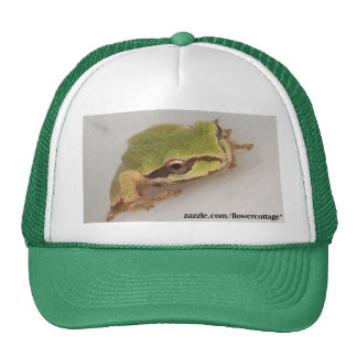 Tree Frogs Mesh Hats