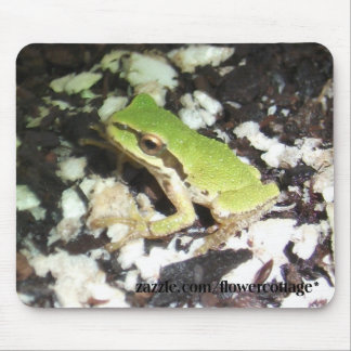 Tree Frogs Mouse Pad