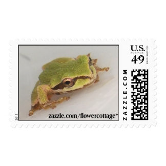 Tree Frogs Postage