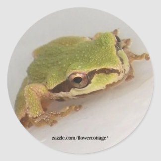 Tree Frogs Stickers