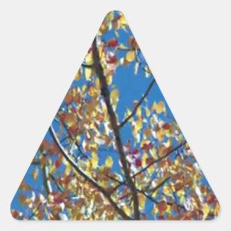 Tree from RedWood Coast America Triangle Sticker