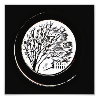Tree from the Porthole - Black and White Art Photo