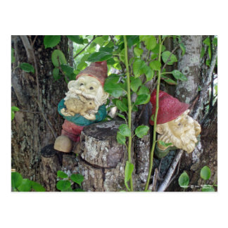 TREE GNOMES POST CARDS