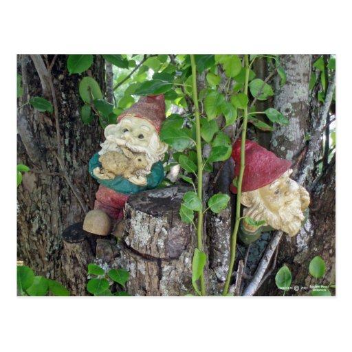 TREE GNOMES POST CARDS