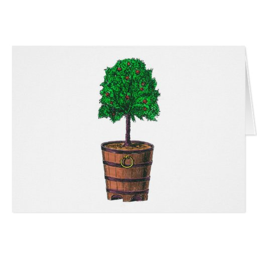 Tree graphic in wooden barrel bucket cards