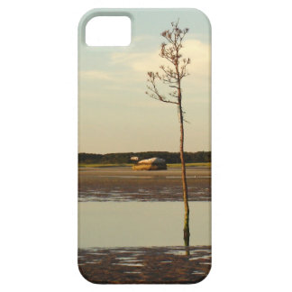 Tree Growing out of Beach on Cape Cod iPhone SE/5/5s Case