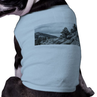 Tree Growing Out Of The Rocks Shirt