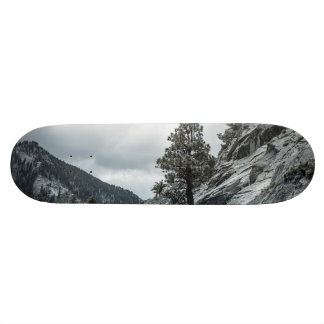 Tree Growing Out Of The Rocks Skateboard Deck