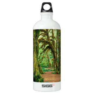 Tree Hall Of Mosses Olympic National Aluminum Water Bottle