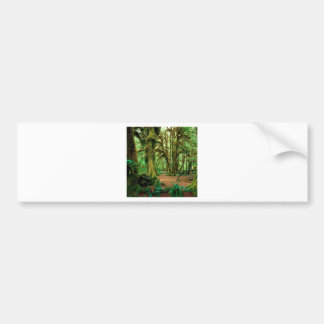 Tree Hall Of Mosses Olympic National Car Bumper Sticker