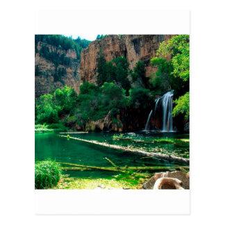 Tree Hanging Lake Glenwood Canyon Colorado Postcard